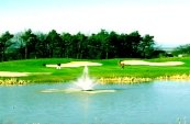 Woodspring Golf and Country Club - Bristol - Golf